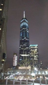 Freedom Tower at night by lynneabrunner