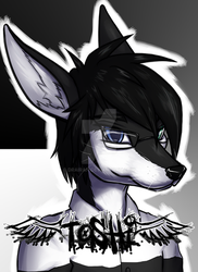 Toshi badge by Drairan