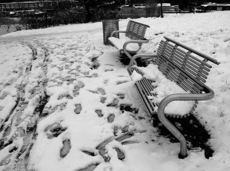 Snowy Bench by kingofechidnas