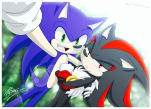 Sonic x Italian!Reader x Shadow by Mochi-and-2P-Rose on DeviantArt
