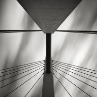 Looking Up III by EmilStojek