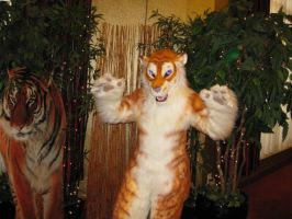 Golden Tiger Costume by MaewynShadowtail