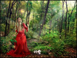 The Enchanted Forest by damaskangel
