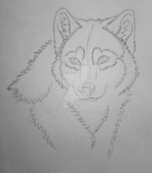 20-minute sketch by Shay-Wolf
