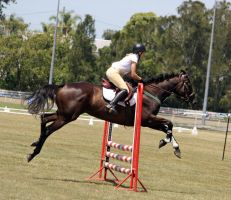 STOCK Showjumping 371 by aussiegal7