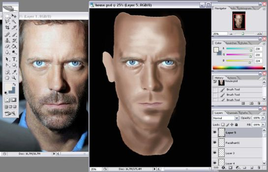 Gregory House WIP03 by JensEklund