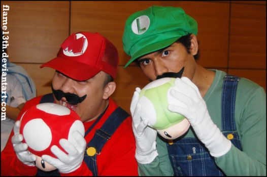 Mario and Luigi by flame13th