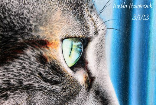 Emmy's Eye - Colored Pencil by ADH-productions