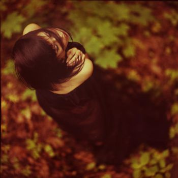 forest 1 by oprisco
