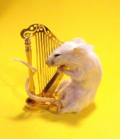 Musical mouse by HippiUnicorn