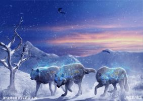 The Northern Wolves by JayGraphixx