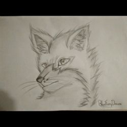 Realistic drawing #1 Headshot of a fox by BlueFurryDemize