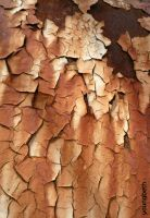 Cracks by youngbeth