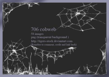 706 Cobweb By Tigers-stock by Tigers-stock