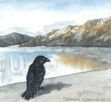 Land of ravens (3/3) by Adoulie
