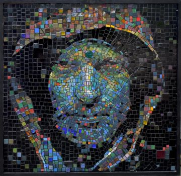 59 Hooded Mosaic by josepht280