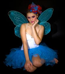Christmas Gift: Fairy Preview by skyleaf-stock