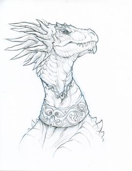 Dragon Portrait by hibbary