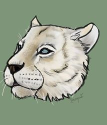 White Tiger by IreneRamos1997
