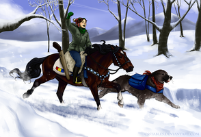 WhiteDecember - Final ride by CSStables