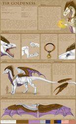 Tir Goldeness ~Character Sheet 2016~ by Tir-Goldeness