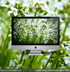 Truly Greeeeen  Wallpaper by hombre-cz