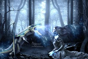 The story of dragon warrior by annemaria48