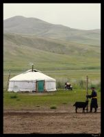 Living in Mongolia by laminimouse