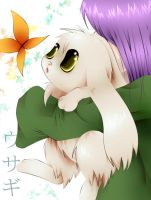 Bunny by needs-a-bullet