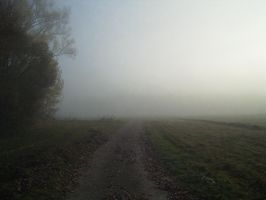 Nature 017 foggy by Dreamcatcher-stock