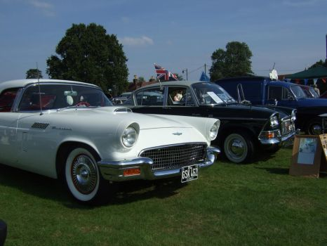 classic cars line up watford by Sceptre63