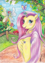 Fluttershy from My Little Pony Friendship is Magic by Black-Feather