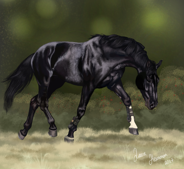 Trotting warmblood by Hei-La