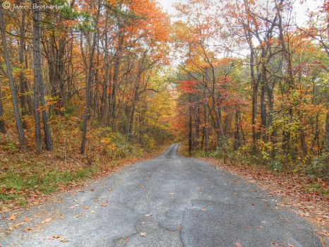 Down The Road In Autumn by jim88bro