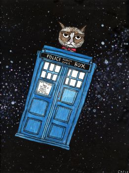 Tardis the Grumpy Time Machine by gollum42