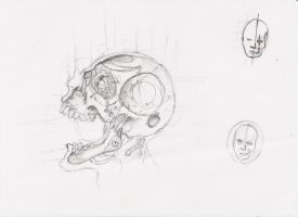 skull concept by InsaneInfernO