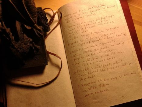 If my Geralt kept a diary... by JediTc