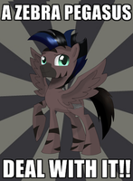 STORMY: A ZEBRA PEGASUS, DEAL WITH IT!! by Zorbitas