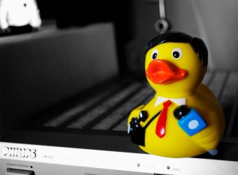 The Duck Reporter by pdentsch