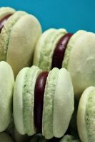 Mint Macarons by bittykate