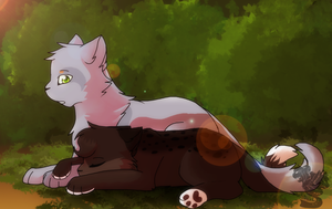 TSC- Darkpaw's daily life| 1/4 by DevilsRealm