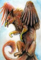 Griffon ACEO by Kasaurus