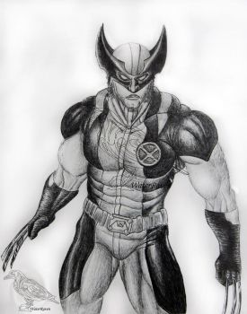 Wolverine by SarahWaterRaven