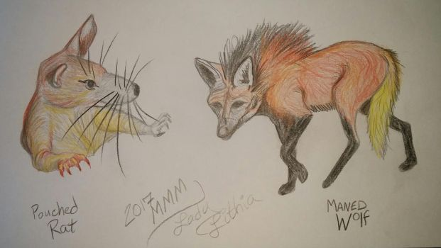 2017 MMM Pouched Rat v Maned Wolf by ladylithia