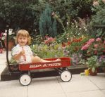 little red wagon by beespit