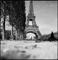 November in Paris2 by jfphotography