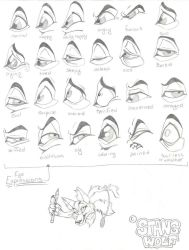 Eye Expressions by StangWolf