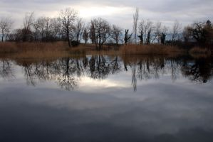 Lac Saint Andre Reflections by organicvision