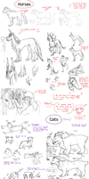 White Space Creatures and Concepts by AbnormallyNice