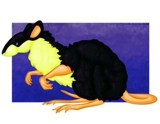 Custard the Rat by CalicoNorth